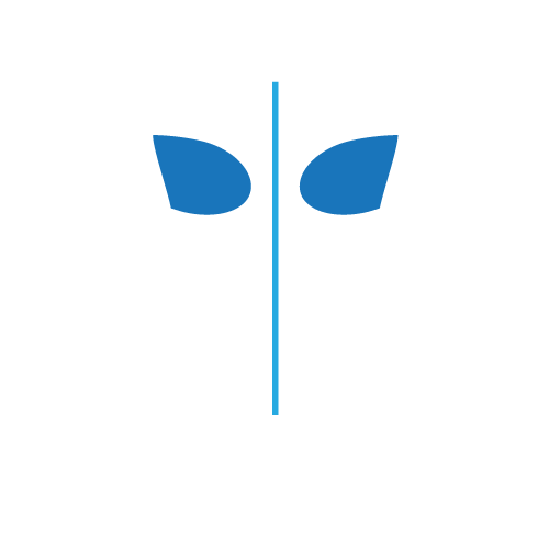 CoolSculpting Bra Fat Treatment areas